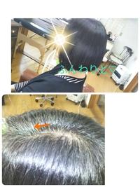白髪染め、茶色じゃなくて良い!黒髪のままで染めるのに、頭皮や髪にやさしいハーブカラーで、と、安城、知立、岡崎、豊田から