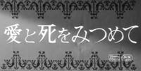 愛と死を見つめて 2017/01/11 19:57:49