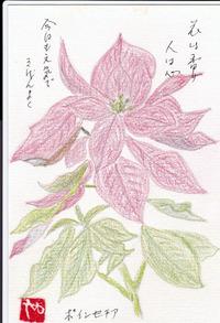 花は香り 人は心 2016/11/07 12:54:50