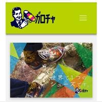 ホームページを引っ越しました。ガロチャ 岡崎市 革靴 革小物 2018/10/13 20:50:08