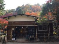 岩屋堂公園の紅葉・もみじは今が見ごろ♪ オオカミのおなかでハンバーガーランチ