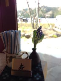 杏カフェで平日限定・体と心に優しいランチ 岡崎市
