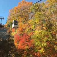 富士見台高原ヘブンスそのはらロープウエイまで紅葉ツーリング
