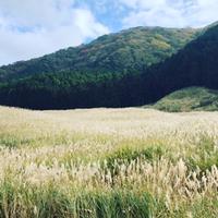 箱根ツーリング 仙石原&大涌谷 冷えに今年初ヒーテックON