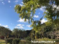 定光寺公園*