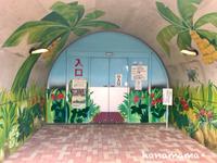 鞍ヶ池の植物園*