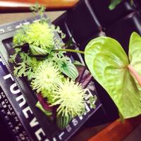 (豊田市 花 アレンジ教室)5月Flower lesson