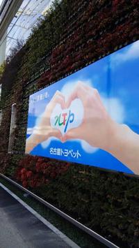 速報!みよし市情報、名古屋トヨペット三好店グランドオープンです!