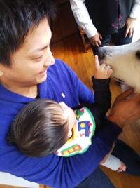 グレートピレニーズ大きな犬を触ってみたよ、選びとりの儀式は【はさみ】