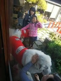 看板犬のピレニーズに会いにきてくれる可愛い姉妹♡