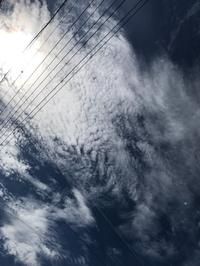 レックんルンルン。とっても素敵な空でした☀︎