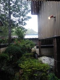 ランチタイム 今日は凄い豪雨でしたね!