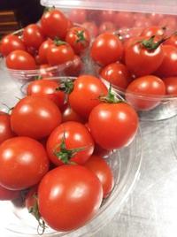トマトの湯剥き 沢山しました!