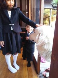 七五三の御祝い  豊田市挙母神社でお詣り