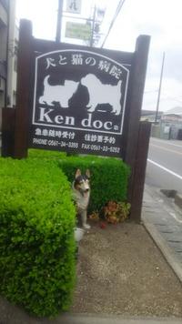 みよし市  犬と猫の病院【ケンドッグ】休診日なし、夜間対応あり