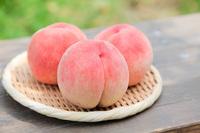 【お知らせ】桃の販売につきまして