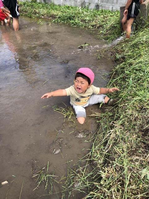 はっぴー農産の田植え体験 2019