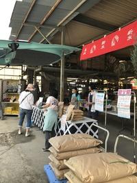 本日特売週間最終日!