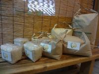 自然栽培米 完売しました