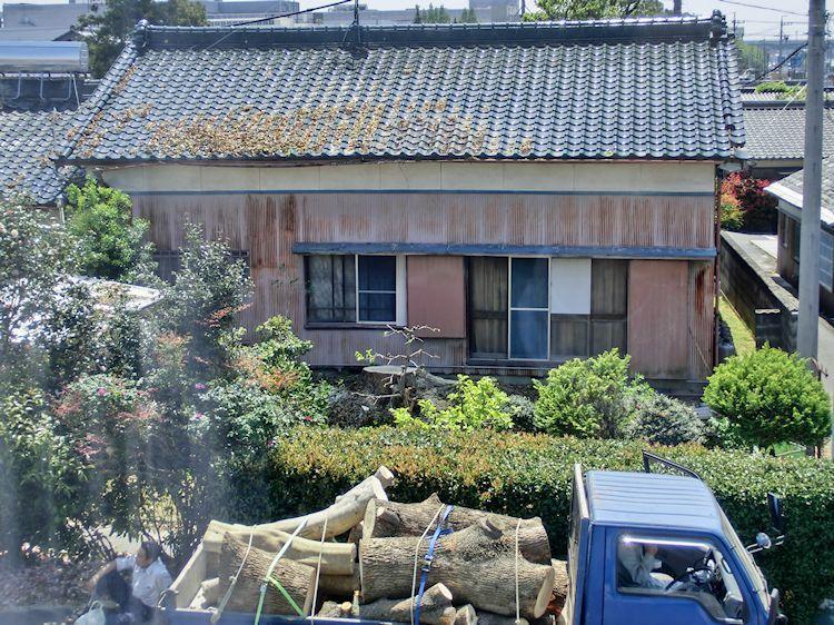 隣の家の大木が・・・