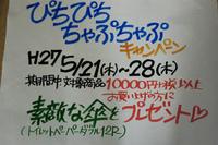 傘プレゼントセール 2015/05/21 05:04:31