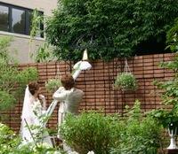 (豊田市 大林町)花遊庭 真夏の撮影