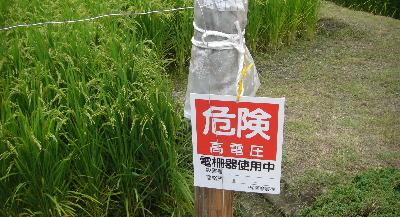 イノシシ防御・電気牧柵