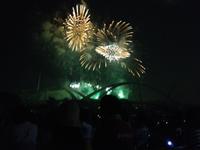 2012 豊田市おいでんメロディ花火