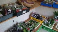 買い物メリット編 旬の新鮮野菜 下切産直市場の魅力をお伝えします。