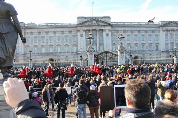農家の手作り新婚旅行②ロンドン観光と市場調査