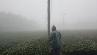 すんげー霧!からのダムカレー☆