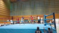 第11回豊田市ボクシング大会