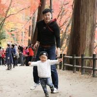 我が家のこびとさん紅葉を駆け抜ける!Autumn walking with my baby dwarf ♪