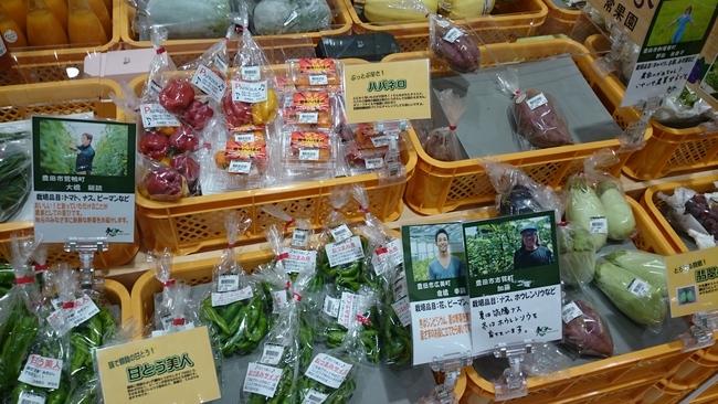 イオンスタイル豊田地元産品コーナーに夢農人全面協力!