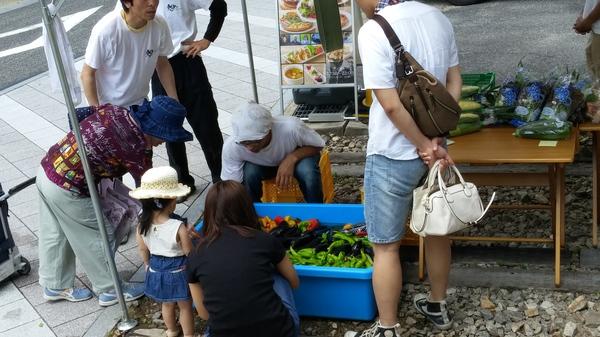 7月1日夢農人マルシェ夏野菜詰め放題やります!