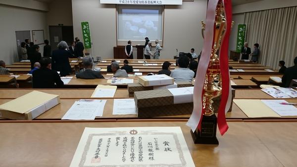 愛知県知事賞をいただきました☆
