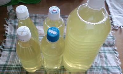 風邪予防に緑茶うがい
