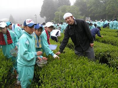 下山中茶摘み体験