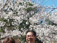 岡崎公園美少女図鑑 2010/04/03 07:44:00