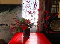 今朝は窓辺の紅梅が満開