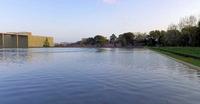 豊田市美術館の思い川桜が見頃