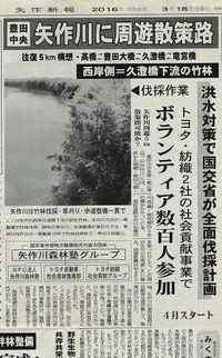 久澄橋下流西側の竹林は白鷺のコロニー