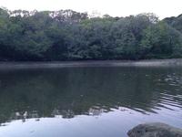 6月23日 寺部池 テラべコクチアオダイ釣り
