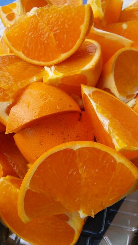 せとかイチオシ♪ブラッドオレンジ。