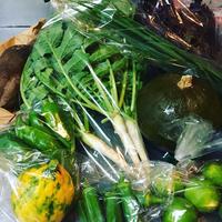 新鮮な野菜たちに囲まれて❤️ 2018/10/11 16:04:23