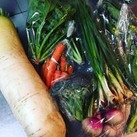 契約農家の豊田の徳八農園さんと小豆島のホームメーカーズさんからお野菜が届きました。