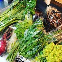 いっぱいの野菜たち❤️ 2018/11/07 15:38:59