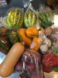 新鮮 旬野菜に囲まれて❗️ 2018/08/10 17:07:33