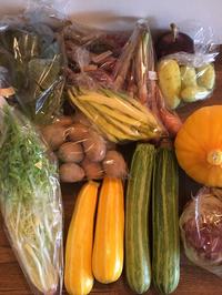契約農家さんの新鮮 旬野菜がたっぷり 2018/07/07 15:33:02