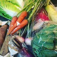 野菜てんこ盛り❤️ 2018/12/14 10:49:40